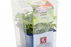 Koppert Limon Cress Single