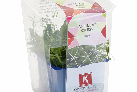Koppert Affila Cress Single
